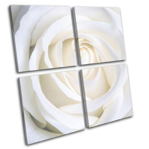 Rose Love Flowers Floral - 13-0793(00B)-MP01-LO